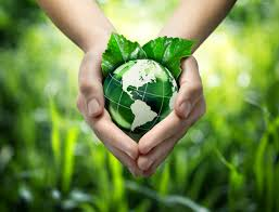 Hands holding a small green globe